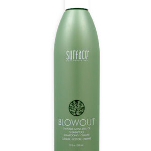 BLOWOUT_SHAMPOO_10OZ